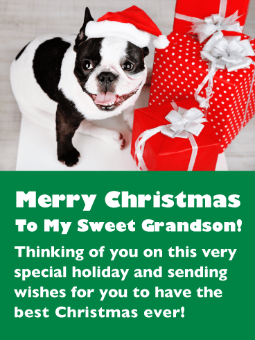 Holiday Puppy – Merry Christmas Card for Grandson