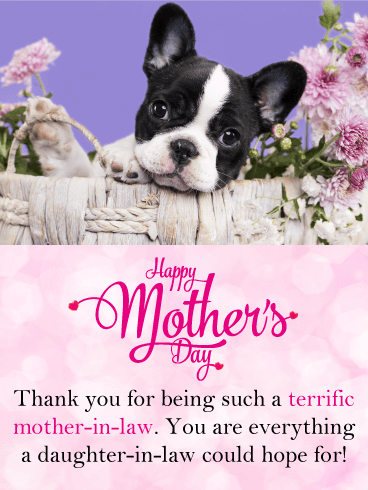 Cute Puppy Happy Motheru0027s Day Card For Mother In Law