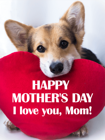 I Love You Mom! - Happy Mother's Day Card