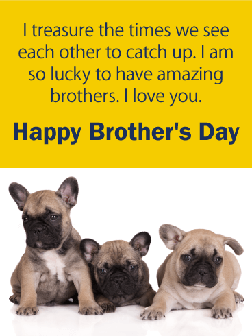 I Treasure the Times - Happy Brother's Day Card