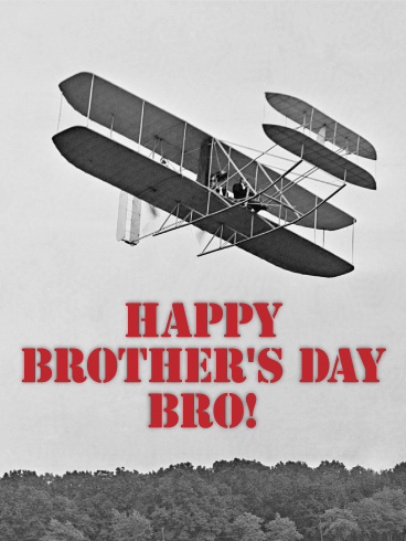 The First Fly - Happy Brother's Day Card
