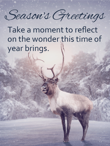 Reindeer in the Forest - Season's Greeting Card