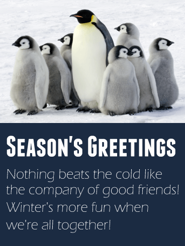 Family Penguin Season's Greetings Card
