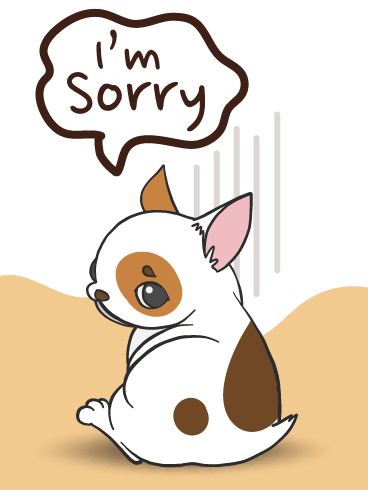 A Genuine Apology – I'm Sorry Cards