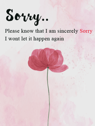 Flowery Apology – I'm Sorry Cards