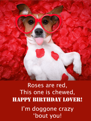 Roses Are Red - Happy Birthday Card for Lovers