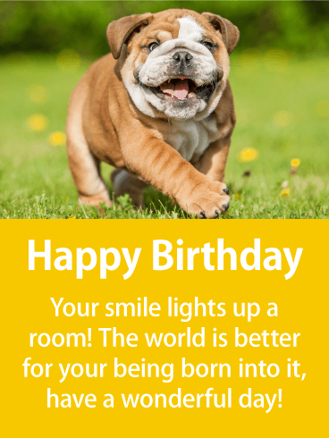 Cute Puppy In a Field - Happy Birthday Card for Everyone