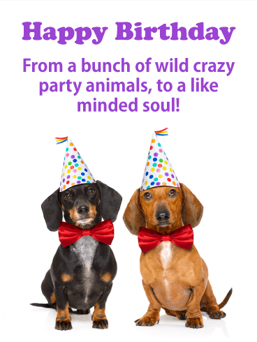 Party Animals - Happy Birthday Card for Everyone