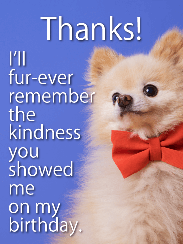 Puppy Thank You Card for Birthday Wishes