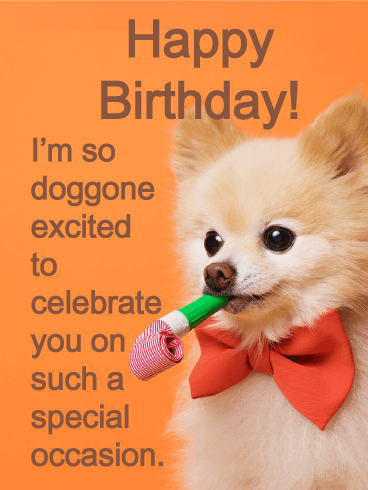 Adorable Pup - Happy Birthday Card