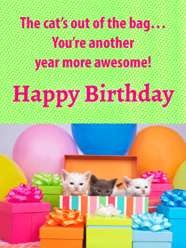 Kitties' Surprise - Happy Birthday Card