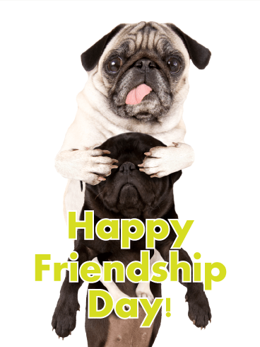 Two Best Pug Friends - Happy Friendship Day Card