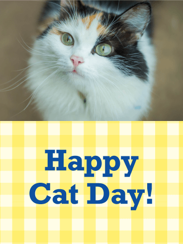Cute Three-colored Cat - Happy Cat Day Card