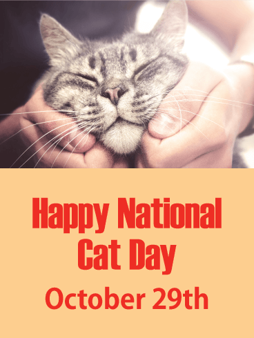 Happy National Cat Day Card