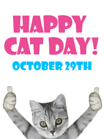 Thumbs Up! Happy Cat Day Card