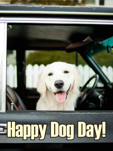 Wanna Ride? Happy Dog Day Card