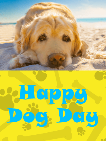 Golden Retriever at the Beach - Happy Dog Day Card