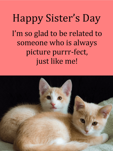Picture Purrfect - Happy Sister's Day Card