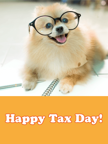 Sweet Pomeranian Tax Day Card