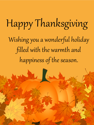 Wishing You a Wonderful Holiday! Happy Thanksgiving Card