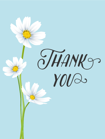 White Cosmos Thank You Card