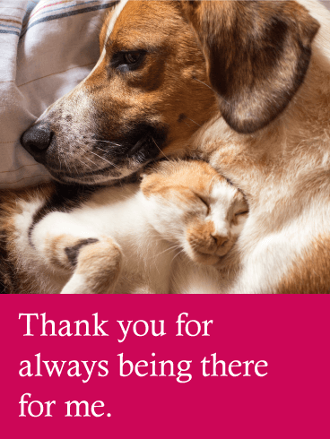 Loving Dog & Cat Thank You Card