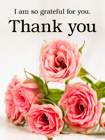 Pink Rose Thank You Card