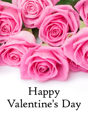 Pretty Pink Rose Happy Valentine's Day Card