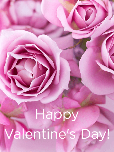 Filled with Pink Roses! Happy Valentine's Day Card