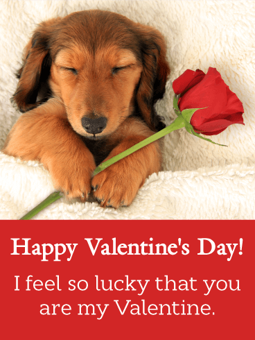sleeping dachshund happy valentines day card - Dog Valentines Day Cards