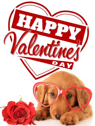 Cute Dachshund Happy Valentine's Day
