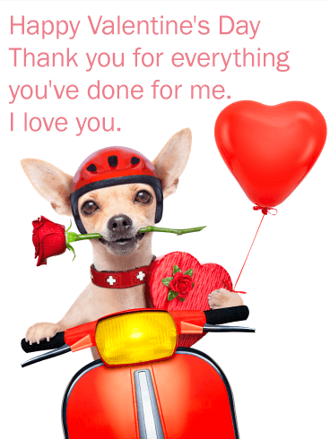 Romantic Chihuahua Happy Valentine's Day Card