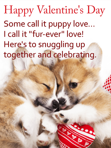 Happy Valentine's Day. Some call it puppy love... I call it