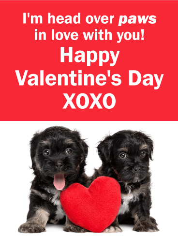 Cute Puppy Funny Valentine's Day Card