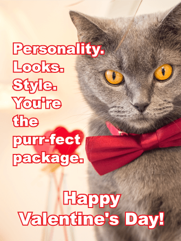 "You're the ""Purr-fect"" - Funny Valentine's Day Card"