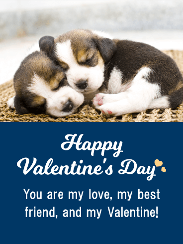 You are my Love - Happy Valentine's Day Card for Him