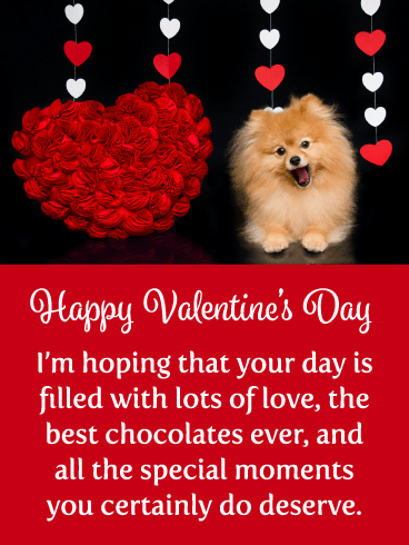 Smiling Puppy - Happy Valentine's Day Card for Everyone