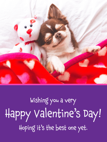 Sweet Puppy - Happy Valentine's Day Card for Everyone