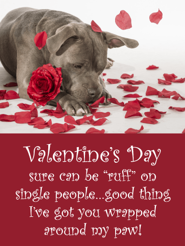 """Valentine's Day sure can be """"ruff"""" on single people…good thing I've got you wrapped around my paw!"""