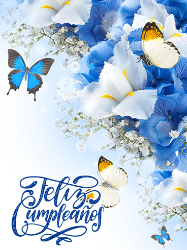 Butterfly & Flower Birthday Card in Spanish - Feliz Cumpleaños