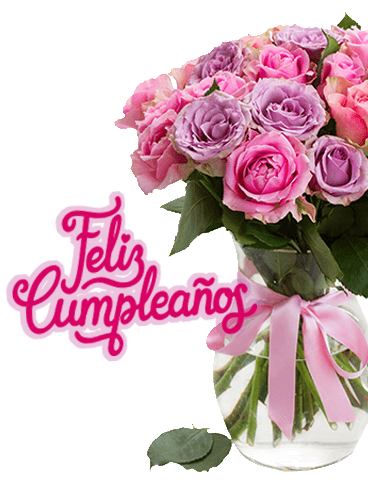 Pink Rose Happy Birthday Card in Spanish - Feliz Cumpleaños